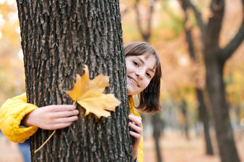 Beautiful teen girl with yellow leaves posing in autumn city park. She is peeking out from the tree stock photos