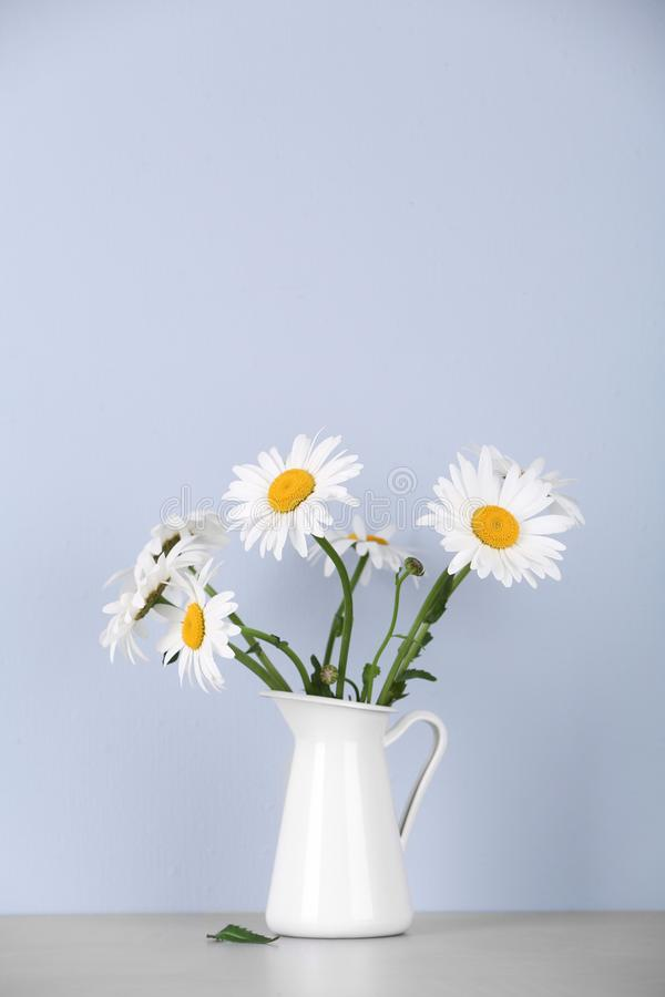 Beautiful tender chamomile flowers in jug on table against background stock image