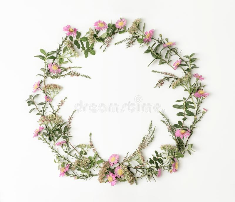 Wreath frame with pink daisies, heath, branches and leaves on white background. Flat lay style. Overhead view. Copy royalty free stock photography