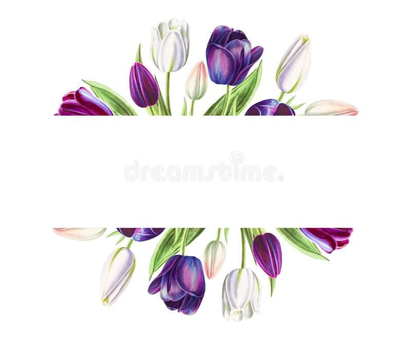 Beautiful text frame from white and black tulips. Marker drawing. Watercolor painting. vector illustration