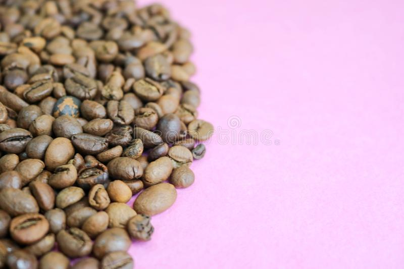 Beautiful texture of freshly roasted selected delicious rich brown natural fragrant coffee tree grains, Arabica coffee beans royalty free stock photography