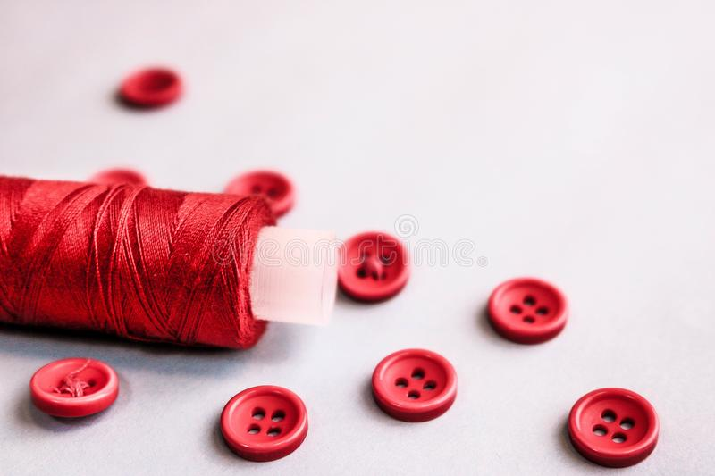 Beautiful texture with lots of round red buttons for sewing, needlework and a coil of thread. Copy space Flat lay White background. Beautiful texture with lots royalty free stock image