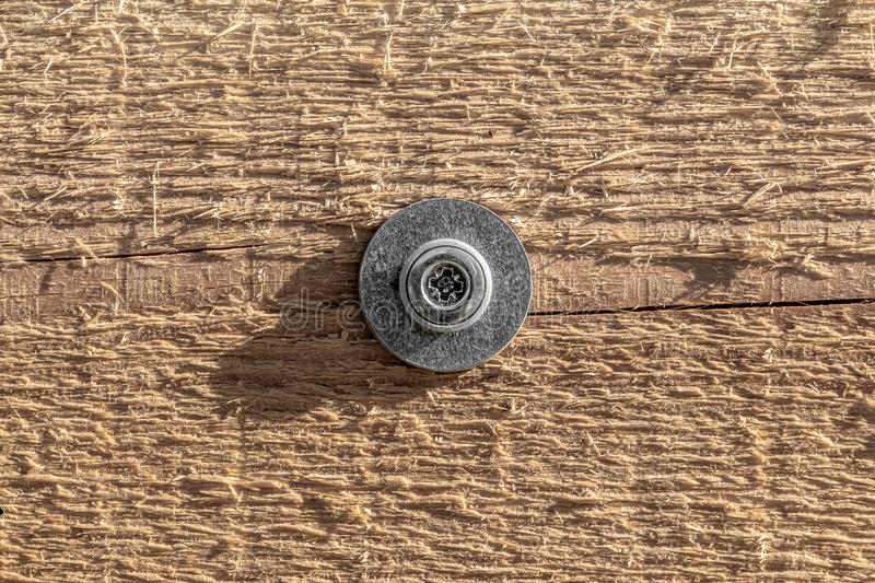 Beautiful texture of yellow wood with knots and one gray metal screw and washer in the photo. Beautiful texture of yellow wood with knots and one gray metal stock photos