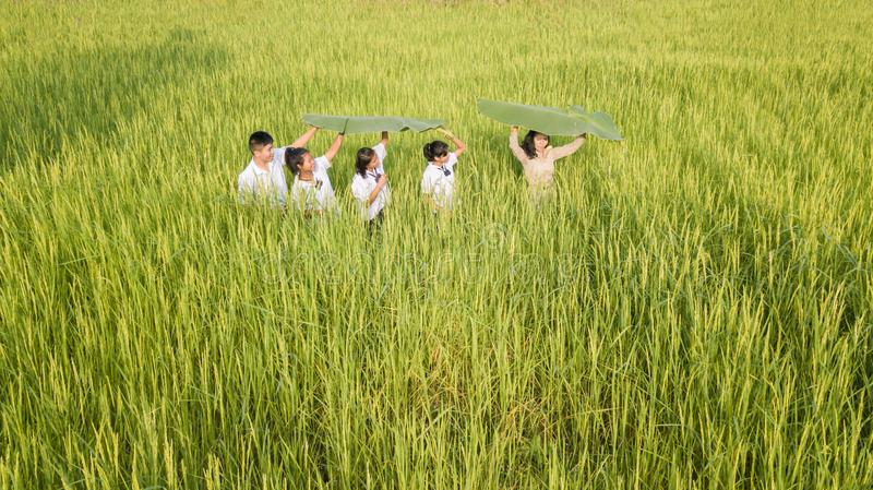 Beautiful Thai Teacher in uniform teaching student to learn natural things at outdoor stock image