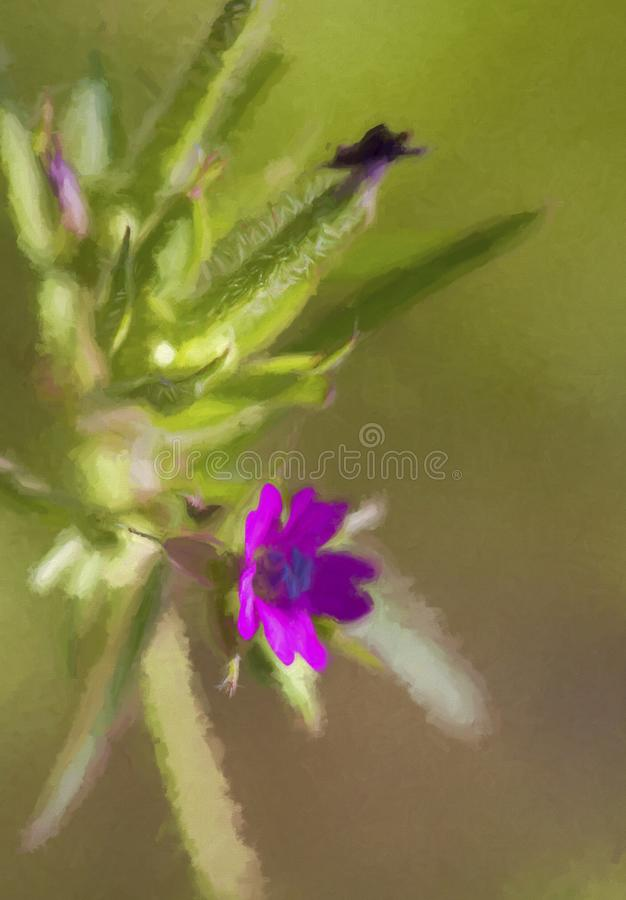 Cut-leaved Cranesbill - Geranium dissectum Digitally Painted. This is a beautiful tiny wildflower with several names, Cutleaf Geranium, Cut-leaved Cranesbill stock images