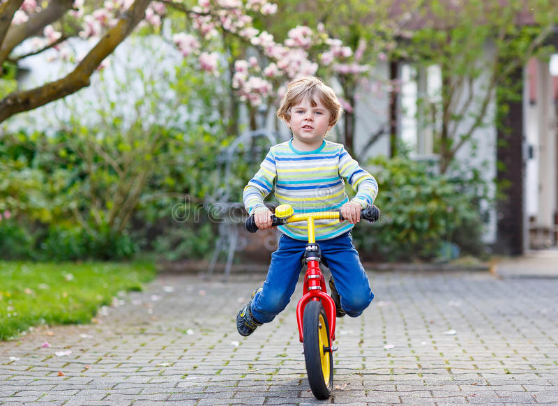 Beautiful toddler child driving his first bike or laufrad royalty free stock photo