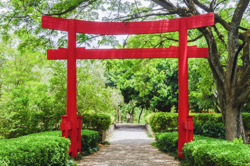 Beautiful torii gate in Japanese garden contracting with the green of nature stock images