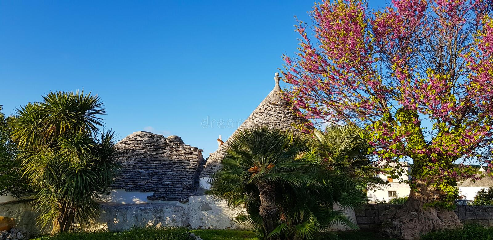 Beautiful town of Alberobello with trulli houses. It is an Italian town in the metropolitan city of Bari, in Puglia,  Italy.  royalty free stock photo