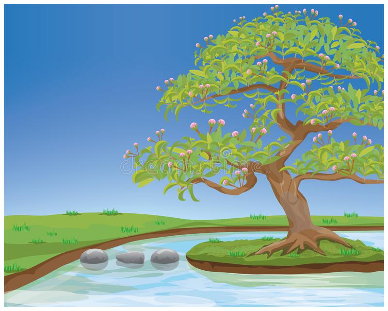 Beautiful tree with pond in garden stock illustration