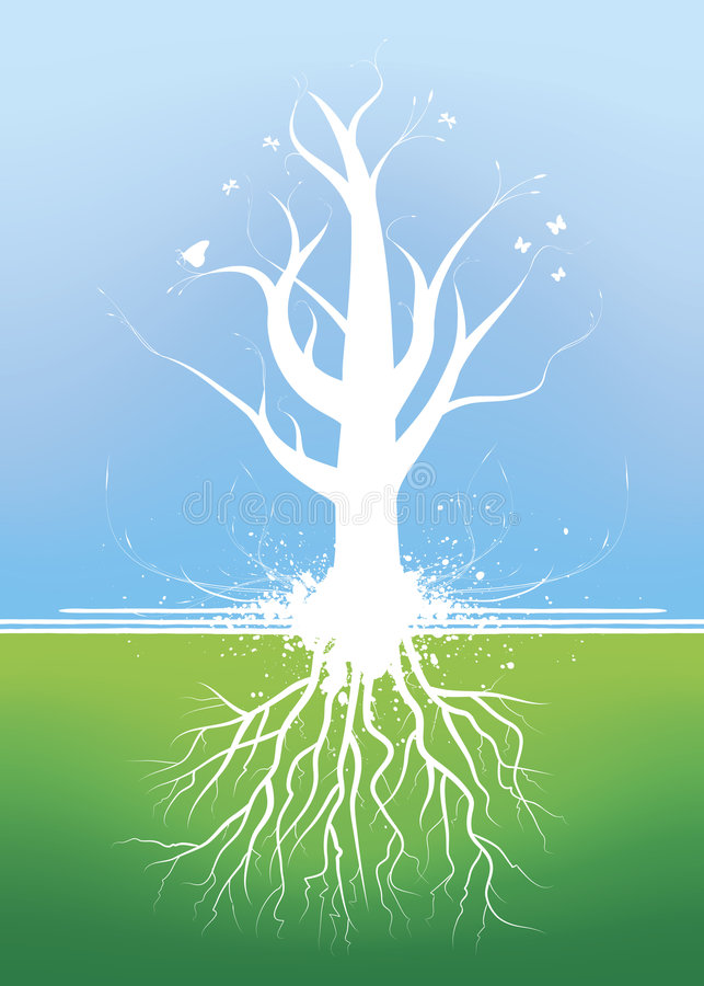 Beautiful tree with roots stock illustration