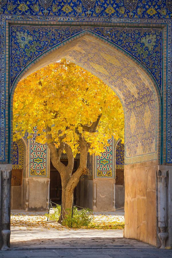 Beautiful tree with yellow leaves framed in arch of Shah Mosque stock photo