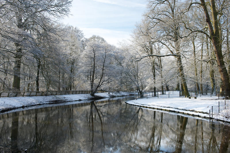 Beautiful trees covered with snow are reflecting in a still water, Netherlands. Beautiful trees covered with snow are reflecting in a still water in winter royalty free stock photos