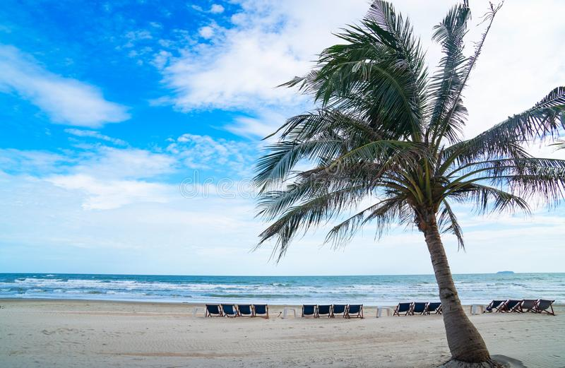 Beautiful Tropical beach Blue sea blue sky white sand beach with beach chairs and Coconut palm tree. Summer vacation royalty free stock photo