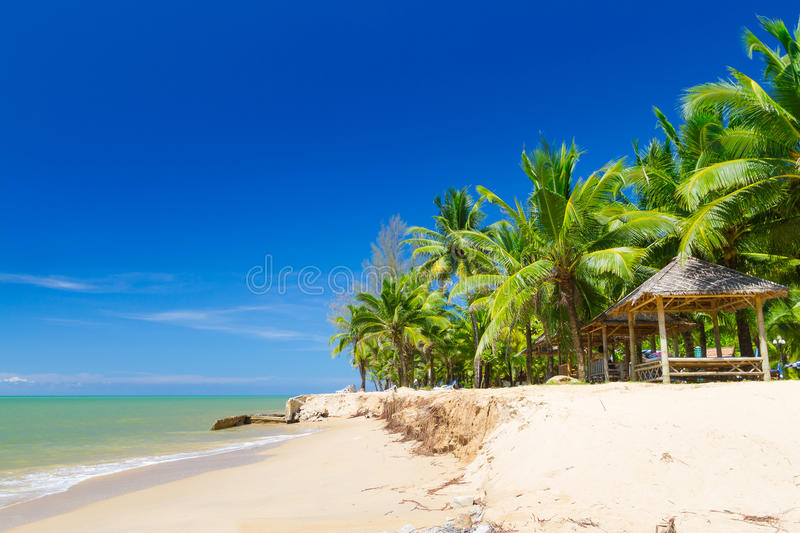 Download Beautiful Tropical Beach With Coconut Palm Trees Stock Image - Image: 29629953