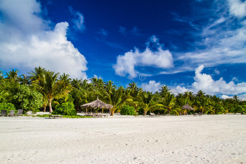 Beautiful tropical beach landscape in Maldives royalty free stock image