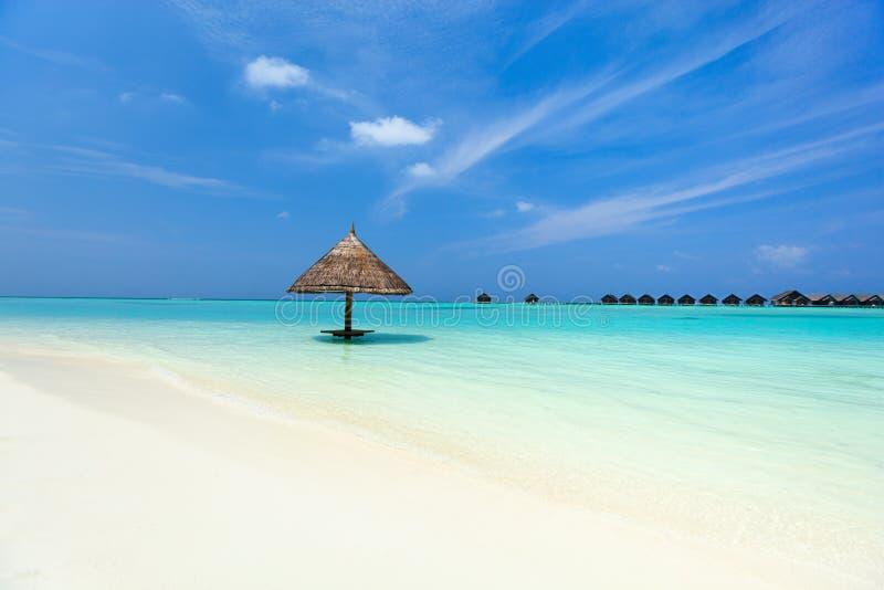Download Beautiful Tropical Beach At Maldives Stock Image - Image: 40163647