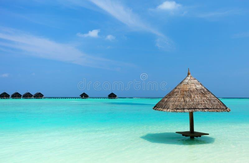 Beautiful tropical beach at Maldives. Tropical thatch umbrella on a beautiful beach at Maldives royalty free stock photo
