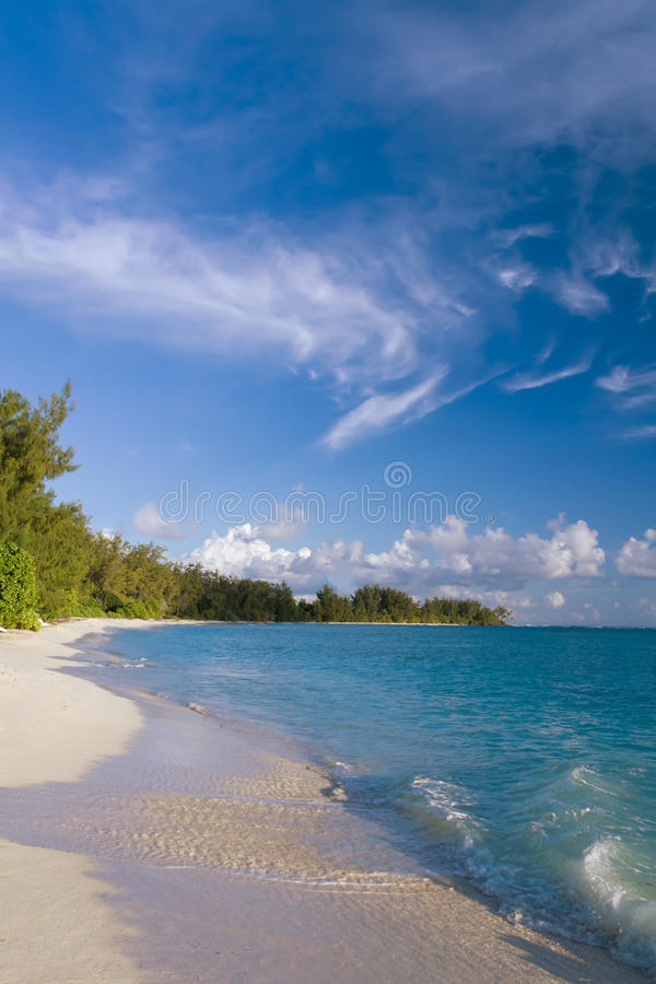 Download Beautiful Tropical Beach With Palm Trees Stock Photo - Image: 26152382