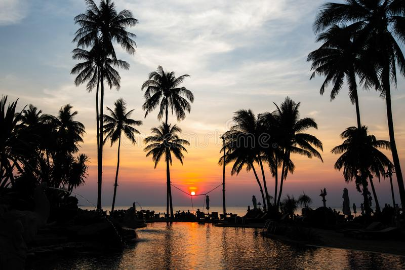 Beautiful tropical beach with palm trees silhouettes at dusk. Travel. stock photos