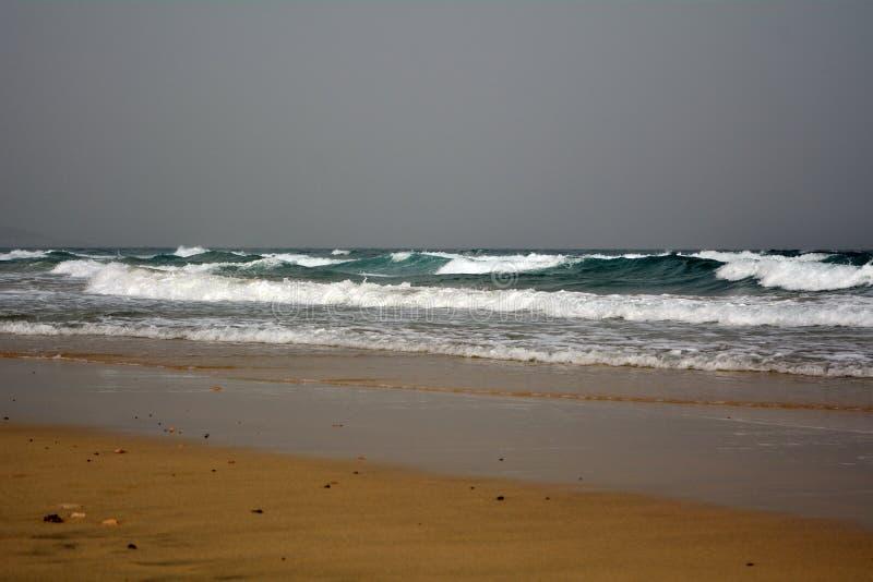 Beautiful tropical beach on paradise Island. Canary Island Fuerteventura Spain. royalty free stock image
