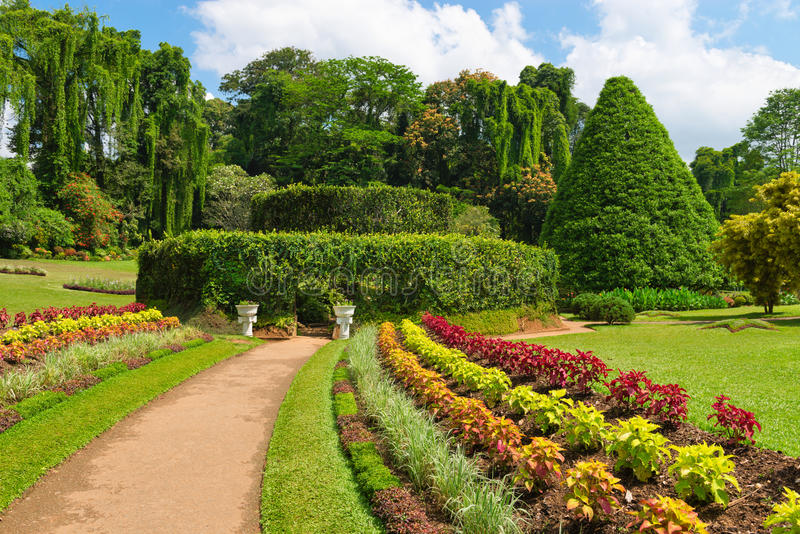 Download Beautiful Tropical Botanical Garden Royalty Free Stock Photography - Image: 31988977