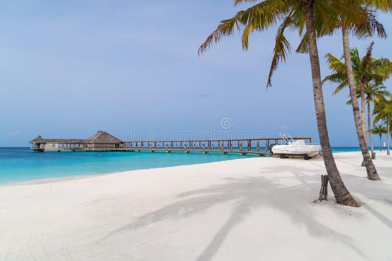 Beautiful tropical Maldives island on the beach background. royalty free stock photo
