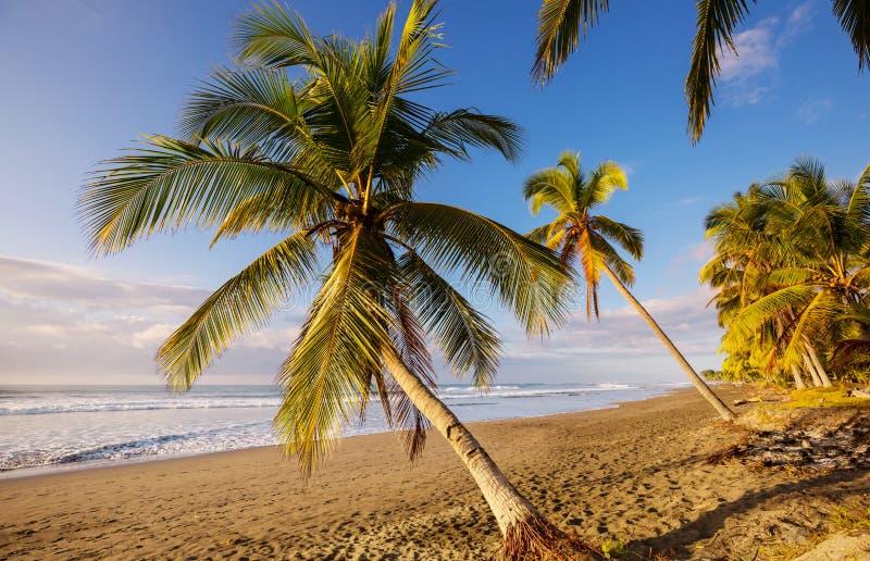 Coast in Costa Rica. Beautiful tropical Pacific Ocean coast in Costa Rica royalty free stock image