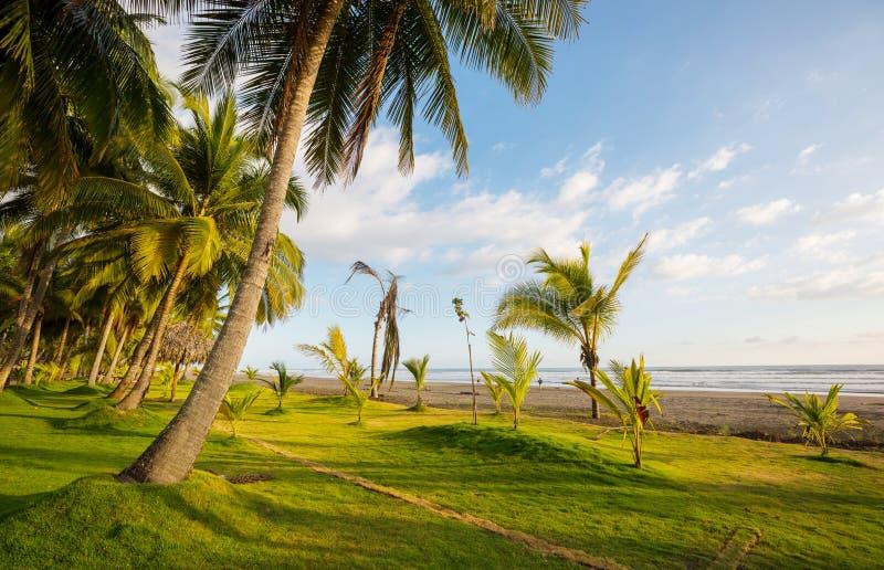 Coast in Costa Rica. Beautiful tropical Pacific Ocean coast in Costa Rica stock photos