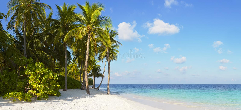 Beautiful tropical panorama royalty free stock photography