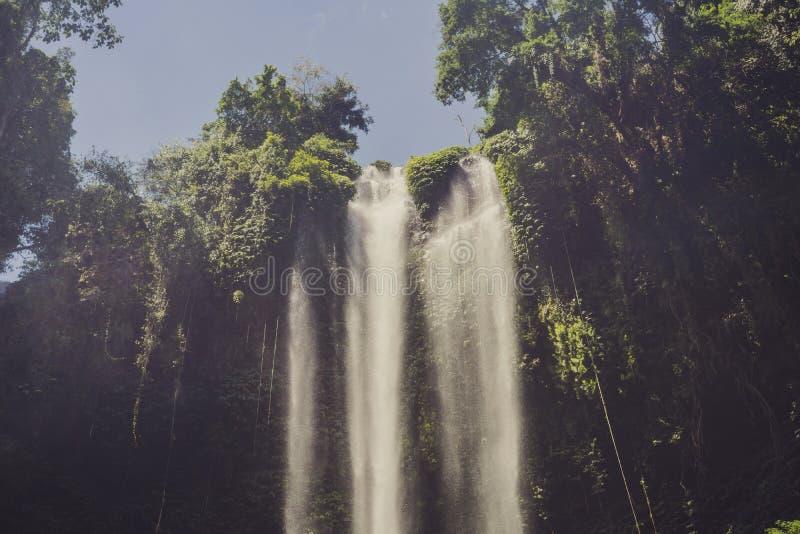 Beautiful tropical Sekumpul Waterfall in Bali, Indonesia.  stock photo