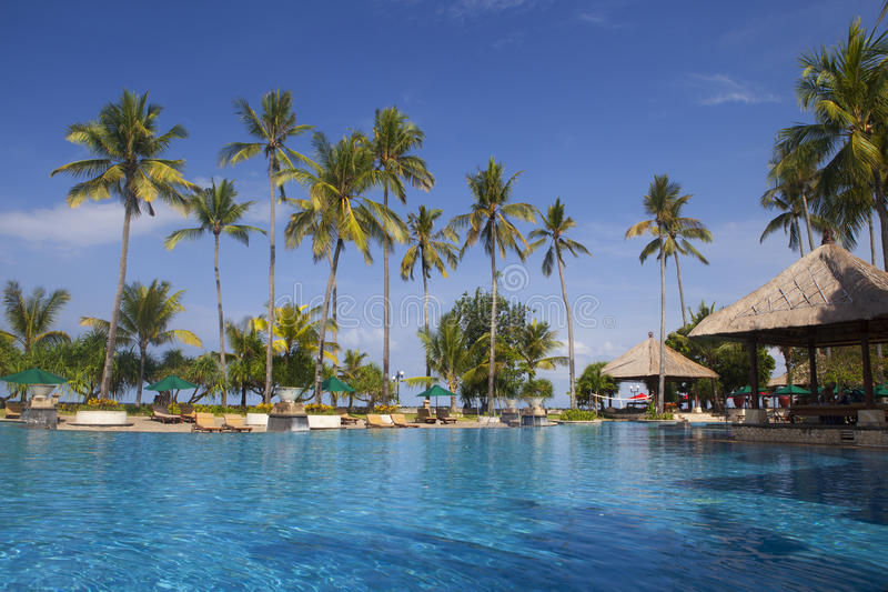 Download Beautiful Tropical Swimming Pool Stock Photo - Image: 27919962