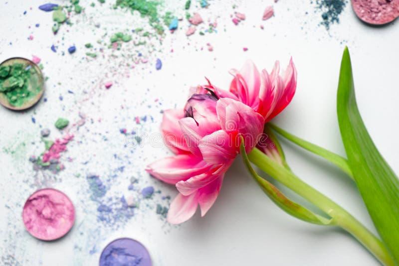 Beautiful tulip with crushed eyeshadows on white background royalty free stock photo