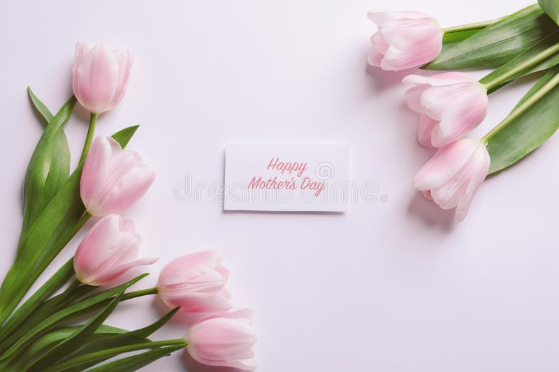 Beautiful tulips and greeting card with words stock photography