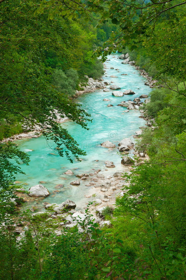 Beautiful turquoise mountain river Soca. Beautiful turquoise mountain river in green forest frame. Soca (Isonzo), Julian Alps, Slovenia. Popular touristic stock images