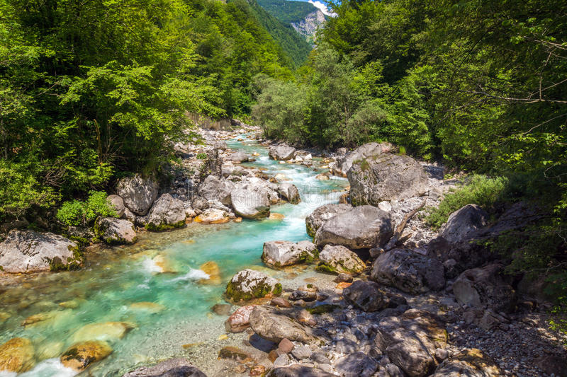 Beautiful turquoise river. In the Triglav National Park in Slovenia stock images