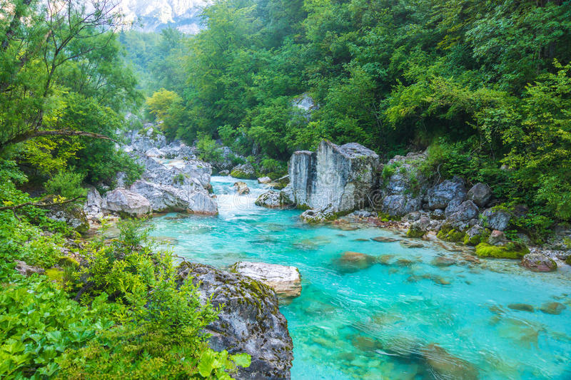 Beautiful turquoise river. In the Triglav National Park in Slovenia royalty free stock image