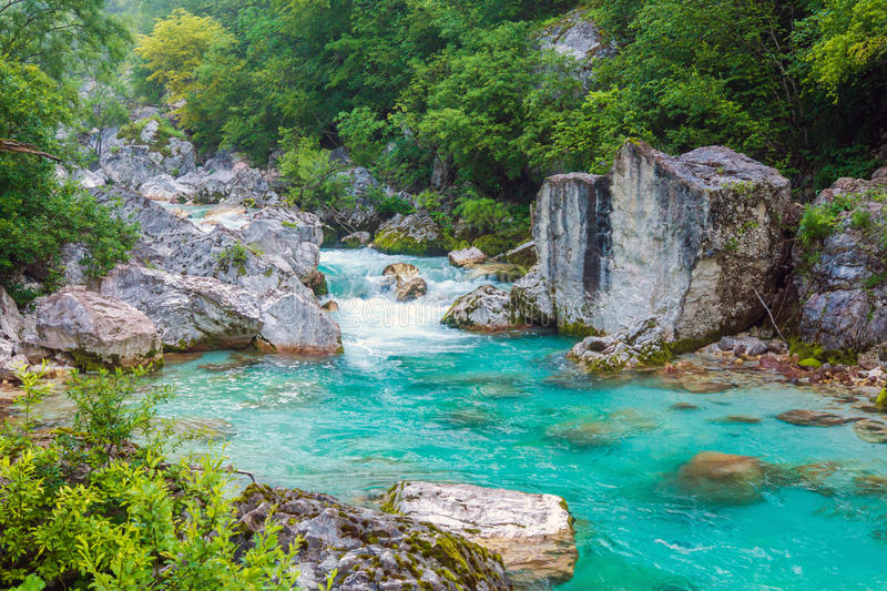 Beautiful turquoise river. In the Triglav National Park in Slovenia royalty free stock photography