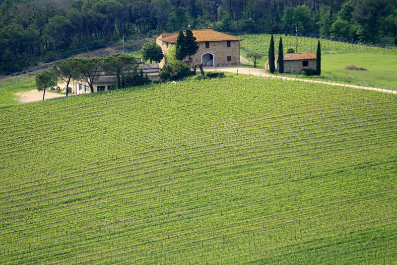 Beautiful Tuscan House royalty free stock photo