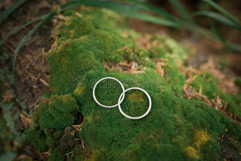 Wedding rings on mossy stones stock images