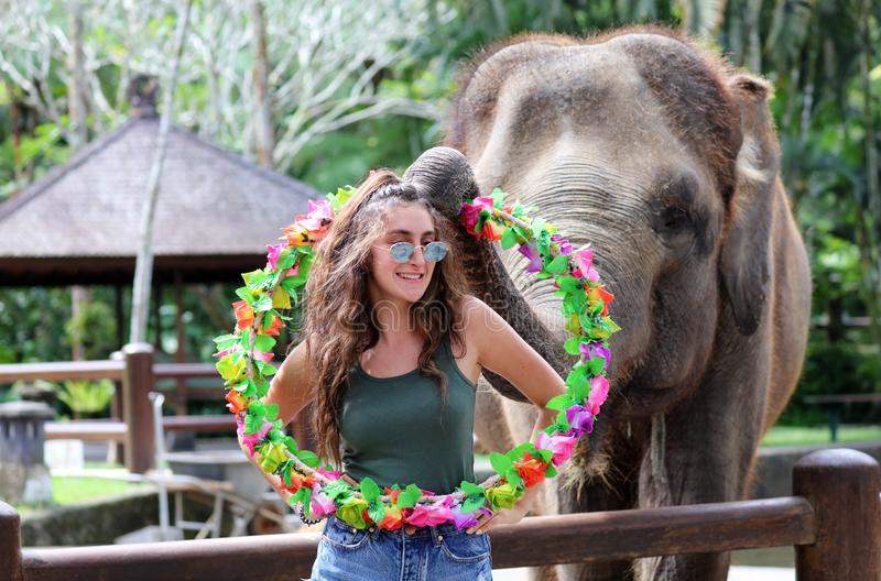 Beautiful unique elephant with girl at an elephants conservation reservation in Bali Indonesia stock photo