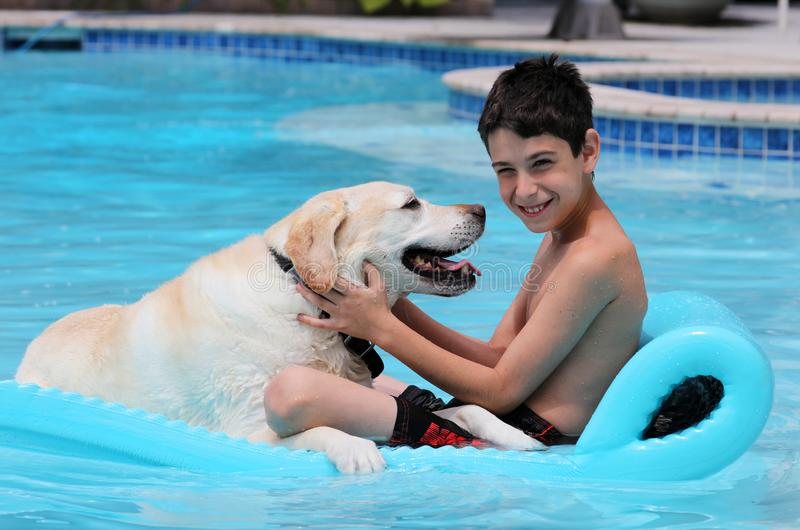 Beautiful unique golden retriever labrador dog and boy relaxing at the pool in a floating bed, dog super funny. royalty free stock photos