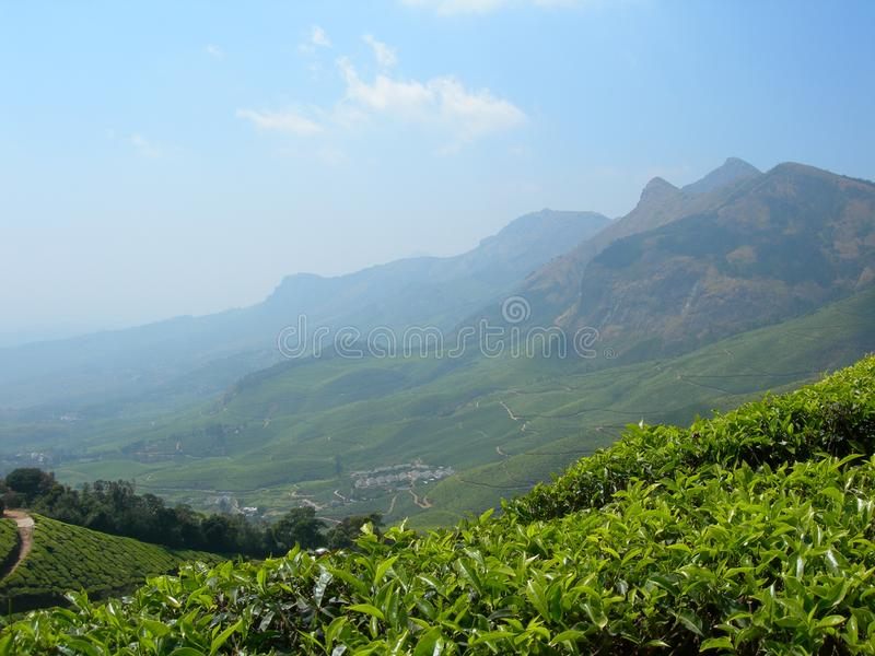 Beautiful valley view Munnar, Kerala, India. Beautiful valley view Munnar is a town and hill station located in the Idukki district of the southwestern Indian stock image