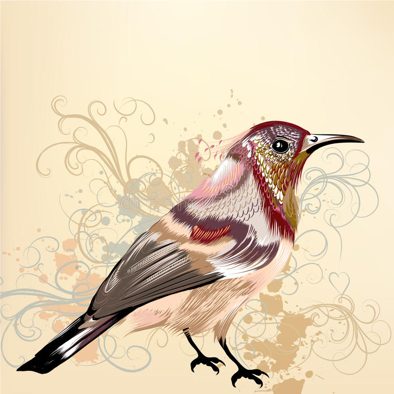 Beautiful Vector Background With Hand Drawn Vector Colorful Bird Stock Photography
