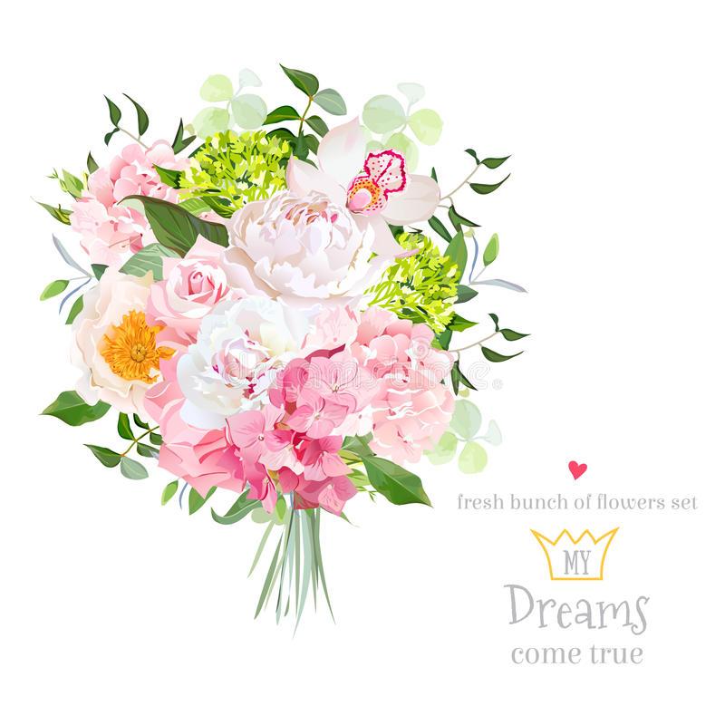 Free Beautiful Vector Bouquet With Peony, Rose, Carnation, Hydrangea, Orchid, Green Plants On White Vector Design Set Stock Photography - 85604062