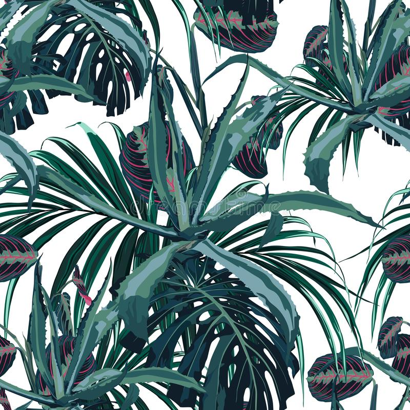 Beautiful vector floral seamless pattern background with agave and tropical palm leaves. stock illustration