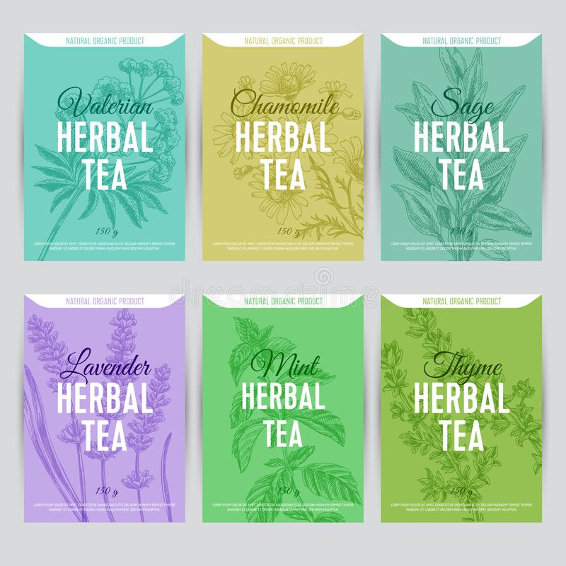 Beautiful vector hand herbal tea card set. vector illustration