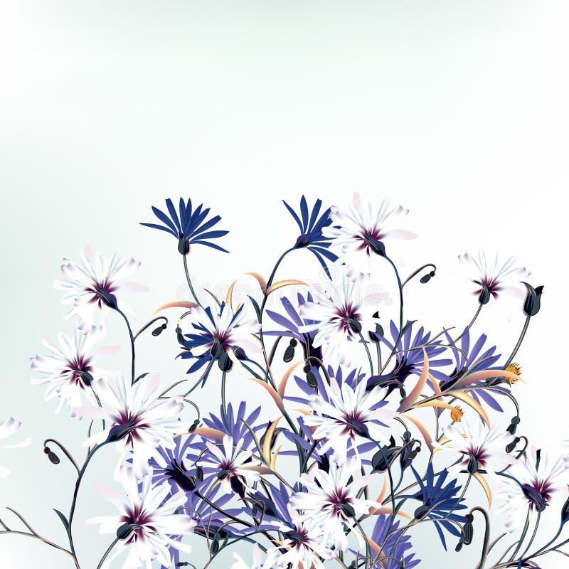 Beautiful vector illustration with field flowers stock illustration