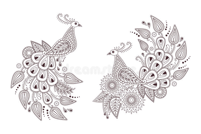 Beautiful vector peacock birds in indian paisley style vector illustration
