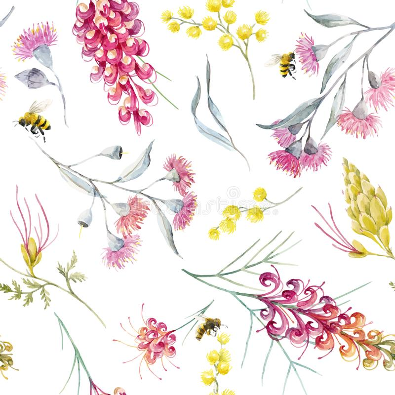 Watercolor australian grevillea vector pattern stock illustration