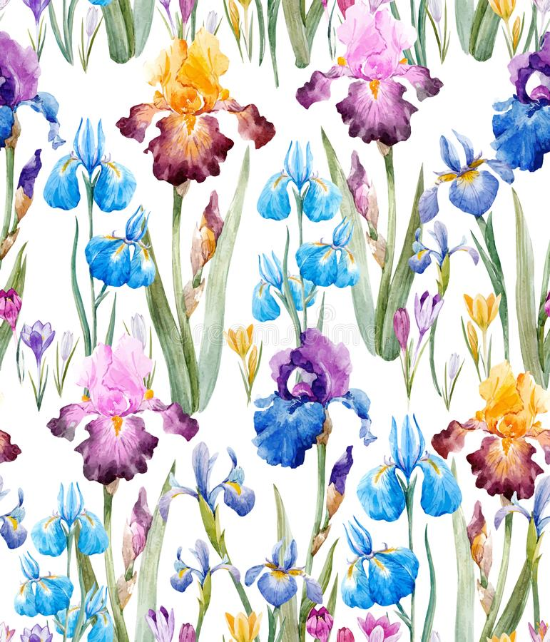 Watercolor floral vector pattern royalty free illustration